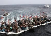 Tàu cá Trung Quốc càn quét các vùng biển khắp thế giới