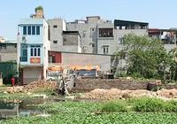 Hà Nội: Nhà 'nhảy dù' trên đất nông nghiệp