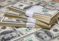 Giá USD tiếp tục giảm sâu