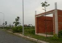 Tạm đình chỉ công tác chủ tịch UBND phường 9, TP Vũng Tàu