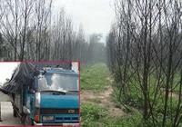 Đồng Nai: Bãi rác độc hại có giang hồ gác