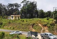Khánh Hòa: Xóa sổ 100 ha rừng ở Hòn Bà