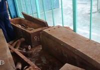 500 kg nghi là ngà voi qua cảng Cát Lái
