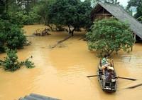 Tan hoang làng biển Cảnh Dương