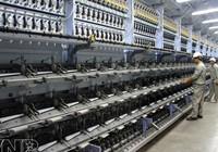 Trông chờ 'giải cứu' nhà máy 7.000 tỉ đồng