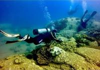Thuê tư vấn độc lập đánh giá việc đổ thải ở Hòn Cau