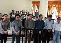 Nguyên chủ tịch Hiệp hội Lương thực lãnh 13 năm tù