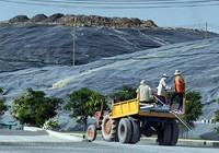 2.125 tỉ trồng cây cách ly bãi rác Đa Phước, Tây Bắc