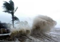 Vì sao 'bão nữ' dữ dằn hơn 'bão nam'?