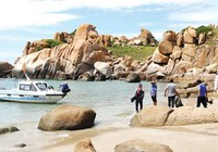 Bình Thuận vẫn quyết cắt bớt Khu bảo tồn biển Hòn Cau?