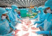 Hàng loạt doanh nghiệp Việt 'sập bẫy' đối tác ngoại