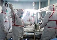 Một nửa Trung Quốc bị ảnh hưởng bởi cúm gia cầm