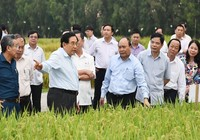 Thủ tướng: 'Cần nhân rộng mô hình nông nghiệp sạch'