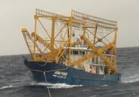 Lai dắt tàu cá cùng 10 ngư dân về đảo Lý Sơn an toàn