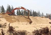 Bộ Công an vào cuộc vụ phá rừng ở Phú Yên