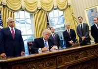 100 ngày đầu: Ông Trump thất bại trên sân nhà