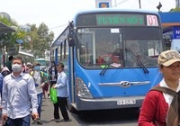 Xe buýt nhiên liệu sạch có nguy cơ... đứt gánh!