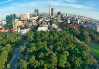 40 năm, cây xanh ở TP.HCM tăng 12 lần