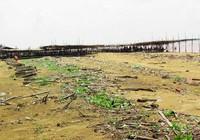 Giao doanh nghiệp đầu tư, biển Thừa Đức chết yểu