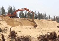 Kiến nghị giải trình các dự án phá rừng ở Phú Yên