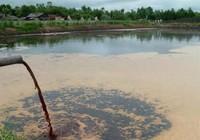 Nuôi heo xả nước thải gây ô nhiễm, mức phạt sao?