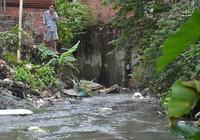 Chi 100 tỉ đồng cứu 3 dòng suối ở Biên Hòa