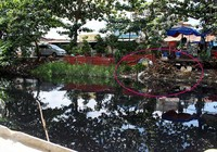 'Giải cứu' 15 kênh, rạch ô nhiễm nhất TP.HCM