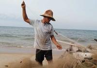 Ngư dân khổ vì cá nóc xuất hiện nhiều bất thường