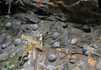 Vách đá kỳ lạ có khả năng 'đẻ trứng'