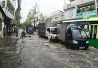 TPHCM: Triều cường gây ngập lụt sâu các vùng trũng thấp