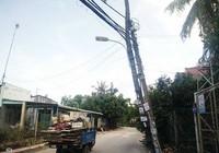 Cột điện dựa cây dừa