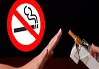 Phát động thi phóng sự truyền hình về tác hại thuốc lá