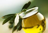 Tiêu diệt tế bào ung thư bằng dầu ô liu?