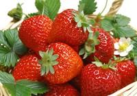 5 thực phẩm giúp da khỏe mạnh