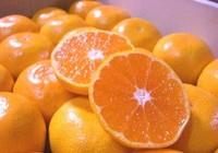 10 thực phẩm giúp da khỏe đẹp