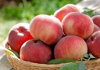 Những loại thực phẩm thường bị bảo quản sai cách