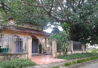 Ngôi chùa 'đặc biệt' trong bệnh viện tâm thần ở Biên Hòa