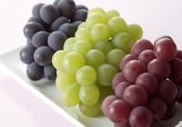 8 loại trái cây dễ kiếm giúp bạn tươi trẻ trong mùa thu