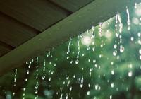 Sử dụng nước mưa thế nào cho đúng?