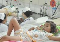 TP.HCM: Sốt xuất huyết tăng gần 100%