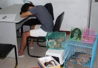 Chủ 'Vương quốc thú cưng' ở Sài Gòn bị bắt quả tang