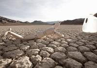 7 nguyên nhân 'ngầm' khiến bạn luôn khát nước