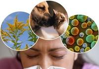 Biến chứng của bệnh viêm mũi dị ứng