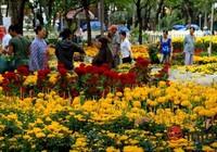 1.000 vé tham quan hội hoa xuân cho công nhân TP.HCM