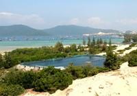 Ngắm cảnh đẹp tuyệt vời trên biển Đầm Môn