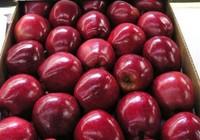 Mẹo hay phân biệt táo Trung Quốc và táo Mỹ
