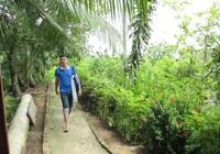 Nhật chọn Cần Thơ là điểm đến du lịch mới ở Việt Nam