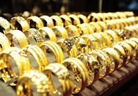 Vàng SJC 'bốc hơi' nửa triệu đồng/lượng