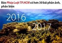 Pháp Luật TP.HCM liên tục phản biện dự án nhận chìm