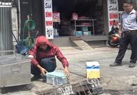 Lần đầu đo mùi cống thối trên đường phố Sài Gòn